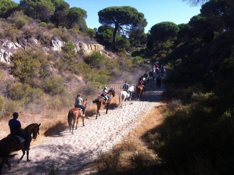 Excursión a caballo en Doñana