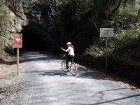 Green road by bike