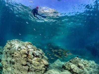 Salida de buceo con tubo, San José