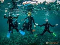 Grupo de snorkel