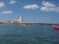 Descubriendo en kayaks la bahia de cadiz