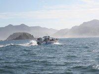 Manejando embarcación a motor