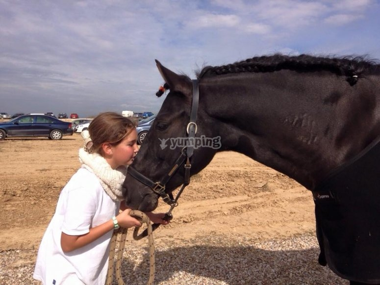 A relaxing horse ride tour