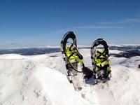 雪鞋卡在雪地里