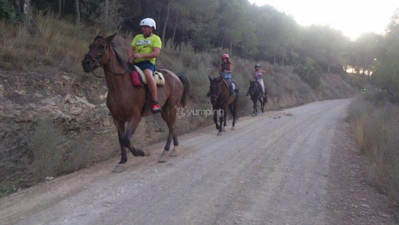 res_o-33733-rutas-a-caballo_de_josue-aloy-garcia_14732433859954.jpg