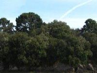 El paisaje de la Reserva Natural