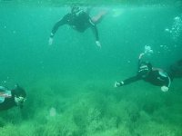 Divers plongeurs