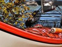 Kayaks de qualité