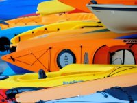 Variété de bateaux