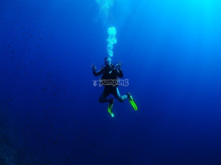 Inmersión en el curso PADI