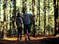 orientandose en el bosque
