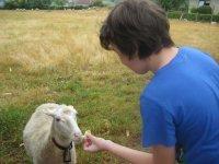 conociendo la fauna