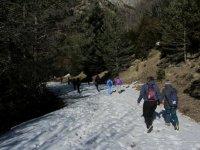 冬季徒步旅行