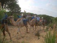 Con amigos en la ruta a camello