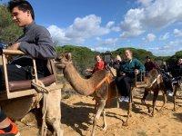 Comenzando el paseo en camello