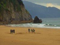 Surfing camp adults 5 days in Ibarrangelu