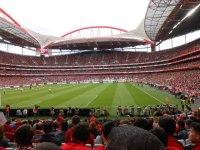 Estadio de futbol oficial