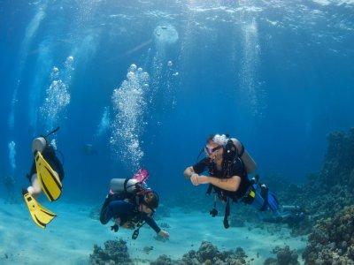 PADI Open Water Diver Course, Las Rozas