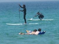 课程桨冲浪泳客和运动员