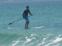 划动的桨板冲浪冲浪桨