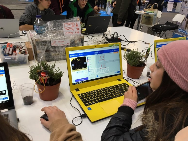 Haciendo actividades con ordenador