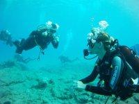 inmersion genial