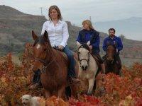 Una tranquila ruta a caballo