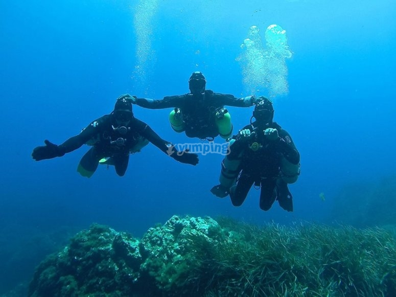 Group diving