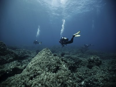 PADI Open Water in the Marine Reserve