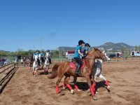 Clases de equitacion en Vic