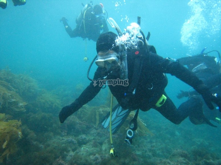 Disfrutando cada detalle del fondo marino