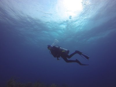 PADI Open Water Diver en Castell De Ferro