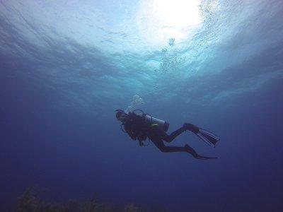 PADI Open Water Diver in Castell De Ferro