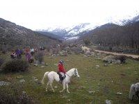Encabezando la excursion en caballo blanco