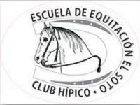 Escuela de Equitación El Soto Campamentos Hípicos