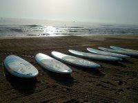 Tablas en la arena de la playa