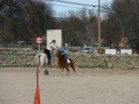 Pruebas con caballos