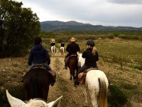 与马匹一起出野