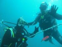 成对考察地中海