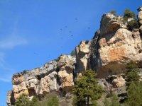 Escalada y rappel, en la Serranía de Cuenca, 2h