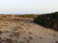 Impresionante duna de Punta Entinas-Sabinar