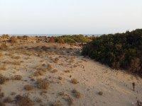 蓬塔恩蒂纳斯-萨比纳尔的印象深刻的沙丘