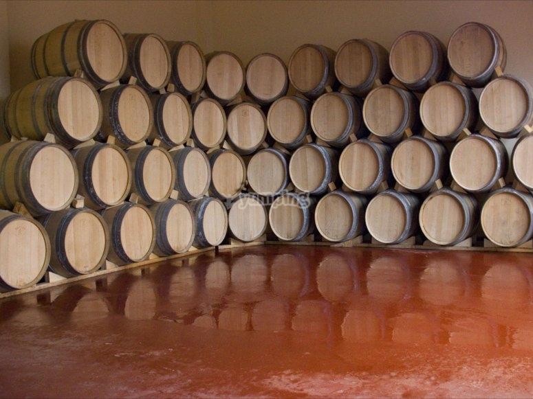 木桶在酒窖葡萄酒旅游阿尔巴塞特阿尔巴塞特