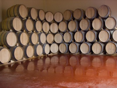 葡萄酒旅游和富恩特阿拉莫的 2 晚酒店住宿