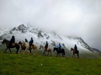 Horse riding in Cantabria