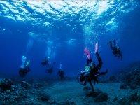潜水员接近海底