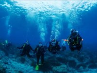 潜水过程中的潜水员群体