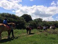 Ruta a caballo por Oyambre