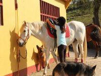 Preparando al caballo para montarlo
