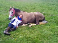 Resting next to the equine